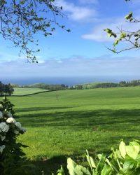 Weideflächen bei Ponta Delgada.