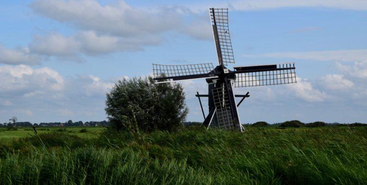 Frieslands Schönheit.