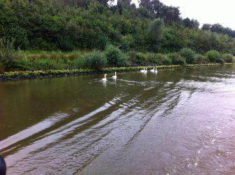 Kanalpartie