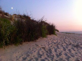 ... am Strand von Spiekeroog.