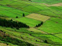 Terceira, die grüne Insel.