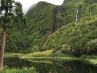 Typisch für Flores: Wasserfälle überall.