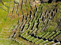 Felsterassen bei Maia. Früher wuchs hier überall Wein.