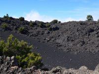 Ruta de los Volcanos, La Palma. Riesige Aschefelder....