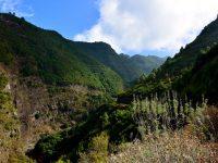 Der Inselnorden von La Palma.