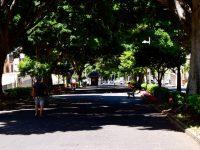 Santa Cruz, die Ramblas.