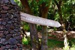 Im Inselinneren ist´s grün. El Hierro - im Oktober nach einem heissen Sommer.