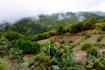 Gomera: Insel in den Wolken.