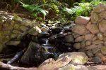 Hier fließen sogar die Bächlein: Parque National de Garajonay.