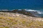 Am Strand Playa de Aguila.