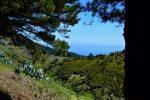 Und immer wieder sieht man den Teide, Teneriffa. Auf El Hierro, bei San Andres.