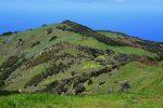 El Hierro im Frühling. Alles grünt und blüht.