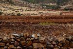 Trockenfeldbau in Fuerteventura. Auf den Feldern wird bald Gemüse wachsen ....