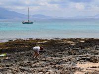 TinLizzy, einsam in der Bucht, Playa Francesa, La Graciosa.