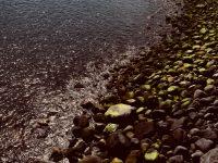 Kein Sandstrand. Funchal.