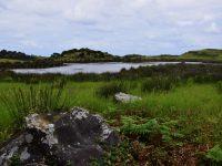 Faja dos Cubres, die Lagune.