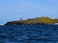 Wir verlassen die Bucht von Vigo.....