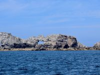 Felsen, Felsen bei Camaret sur Mer.