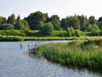 Superschmale Fahrwasser. Volkerak, Schelde.