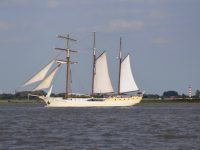 Traditionssegler auf der Elbe.