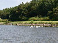 Im Kiel-Kanal.